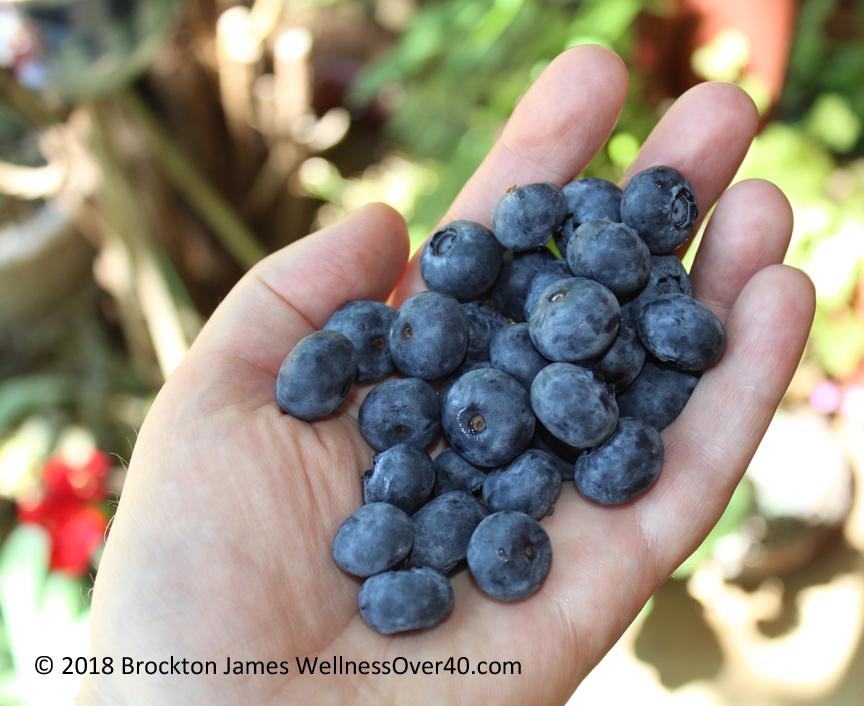 Brockton R.J. James, Blueberries, WellnessOver40.com